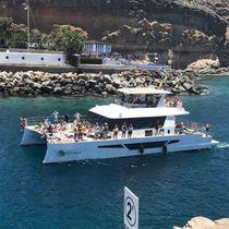 Katamaran-Motoryacht / Charter / Flybridge