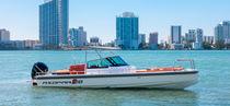 Außenbord-Konsolenboot / Mittelkonsole / Open / max. 8 Personen