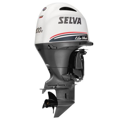 Motor für Berufsboot / Außenborder / Benzin / 4-Takt