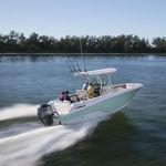 Außenbord-Konsolenboot / Sportfischer / T-Top