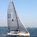 Fock / für One-Design Segelboote / Triradial-Schnitt