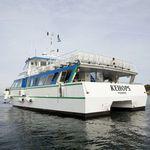 Katamaran-Passagierboot / Innenborder / Aluminium
