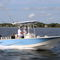Außenbord-Konsolenboot / Mittelkonsole / Open / Sportfischer