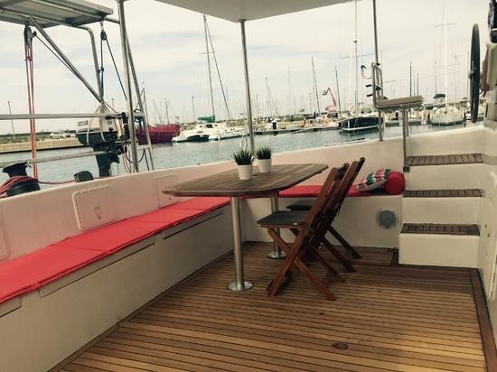 Neue grelle segelnde Katze 52