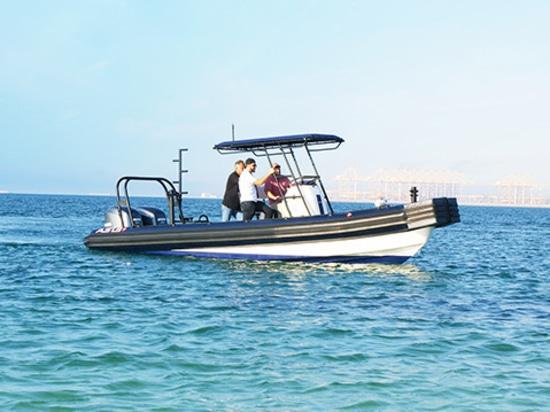 Einführung des flacher Schaumstoß-Bogen steifen aufblasbaren Bootes (RIPPE) durch ASIS