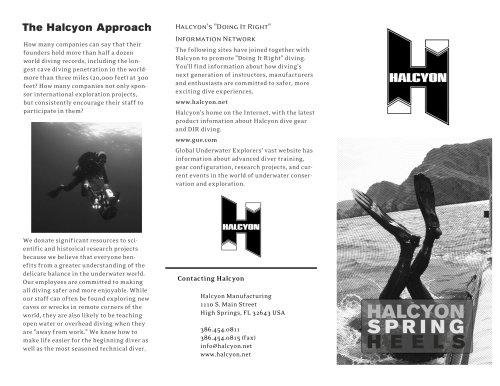 Springheel Halcyon
