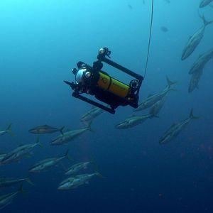 Unterwasser-Marine-Drohne / Fotografie