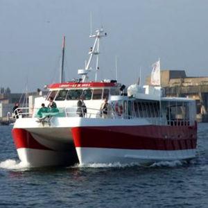 Passagierboot Berufsboot / Katamaran / Innenborder / Aluminium