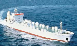 RoRo-Frachtschiff