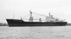 Massengutfrachter-Frachtschiff / Capesize
