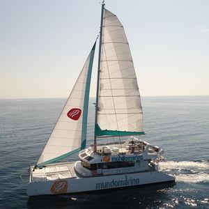 Passagierboot Berufsboot