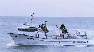 Berufsschiff für Fischerei / Thunfischfänger