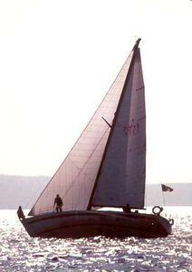Genua / für Fahrtensegelboote