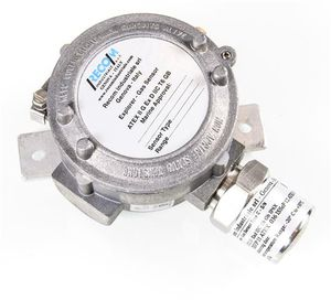 Kohlenstoffmonoxid-Detektor