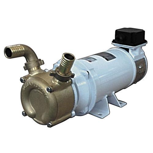 Pumpe für Boot