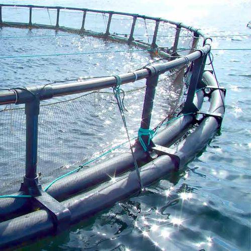 Fischzucht-Fischkäfig / für Aquakultur / Kunststoff / rund