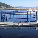 Fischkäfig für Aquakultur / Kunststoff / HDPE / rund