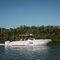Express Cruiser / Außenbord