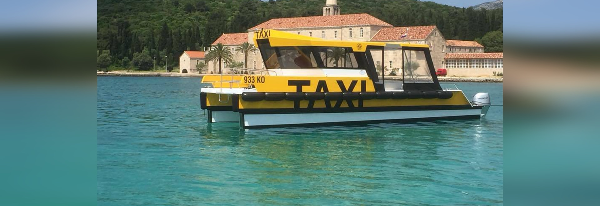 Taxi-Katze