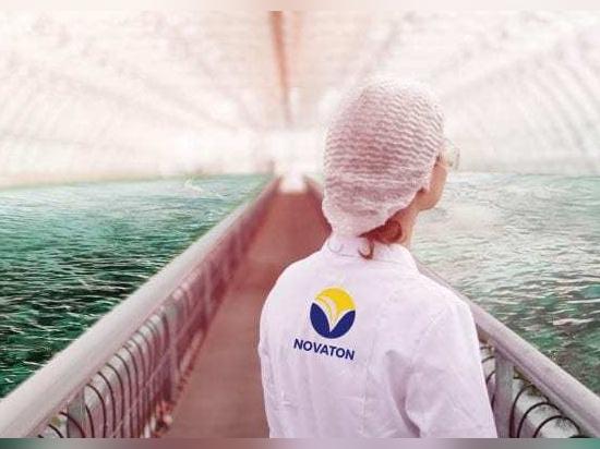 Saubere Energie in der Aquakultur: Einsatz von Technologien zur Zucht gesunder Fische