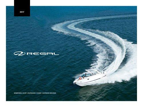 2017 sport boat cruiser