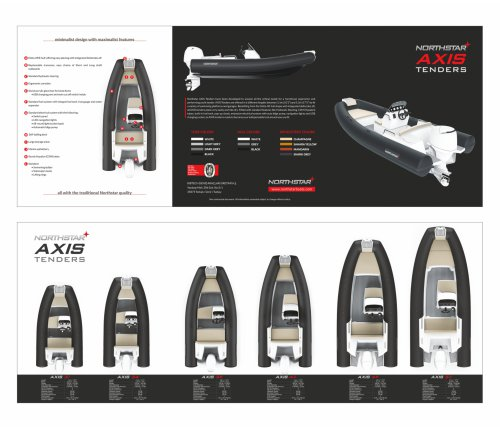 AXIS Tenders Brochure