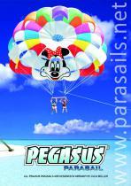 parasails catalogue