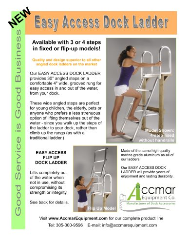 Easy access dock ladder