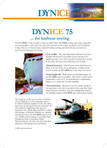 DYNICE 75 ... for harbour towing