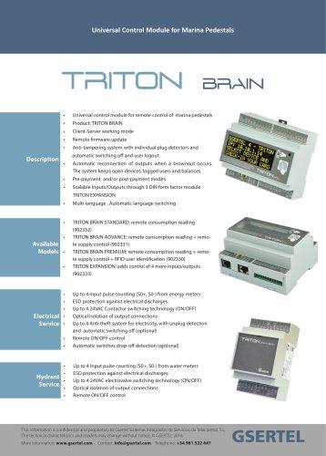 TRITON BRAIN